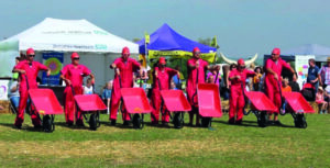 The Red Barrows Aerobatic Dismay Team performing at the Langwith Show - a group of Rhubarb Farm volunteers and staff.